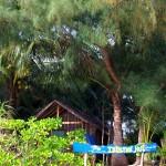 Resort Island Hut