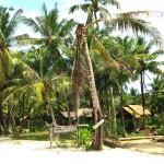 Resort Suchanaree