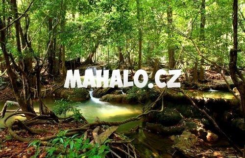 Přírodní rezervace Um Phang