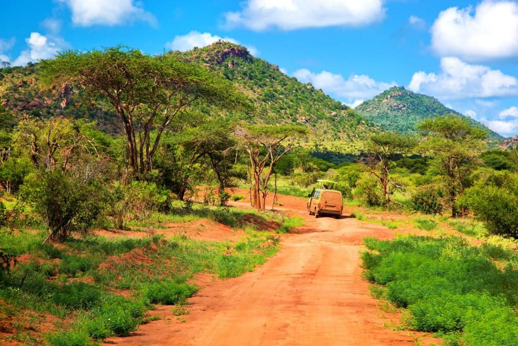 Buš národního parku Tsavo West