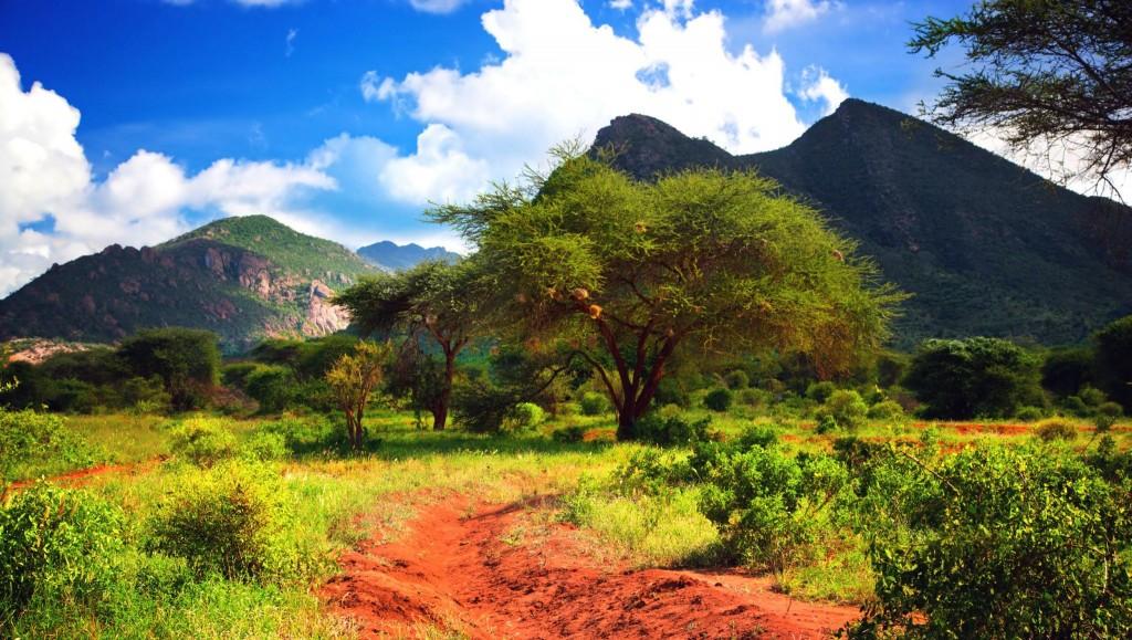 Nádherná krajina národního parku Tsavo