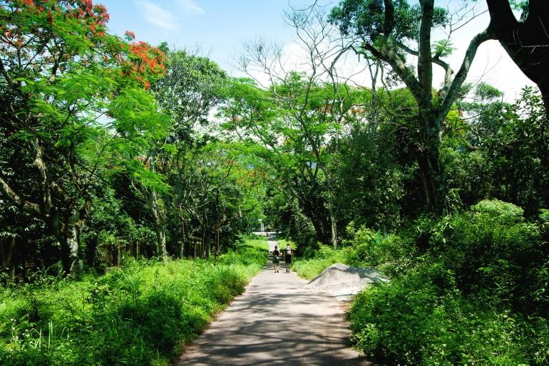 Národní park Cuc Phuong