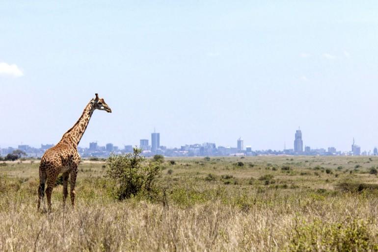 Národní park Nairobi