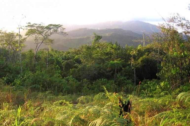 Národní park Sierra de Baoruco