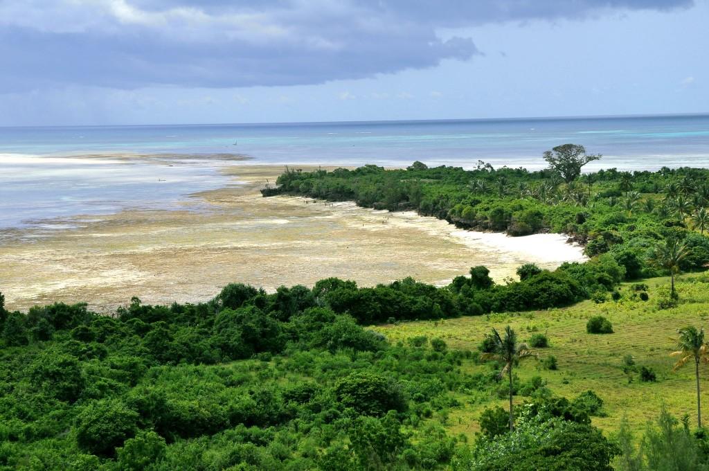 Severní pobřeží ostrova Pemba