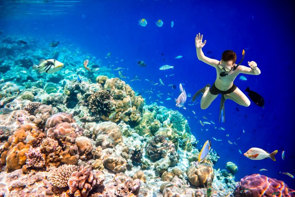 Šnorchlování na Maledivách je velkým zážitkem
