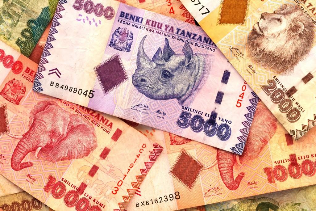Tanzanská měna - šilink