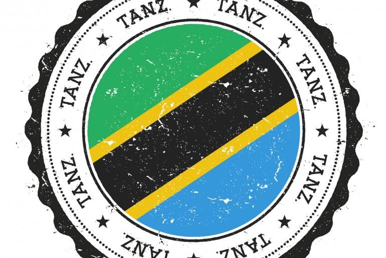 Vízum do Tanzánie, celní informace
