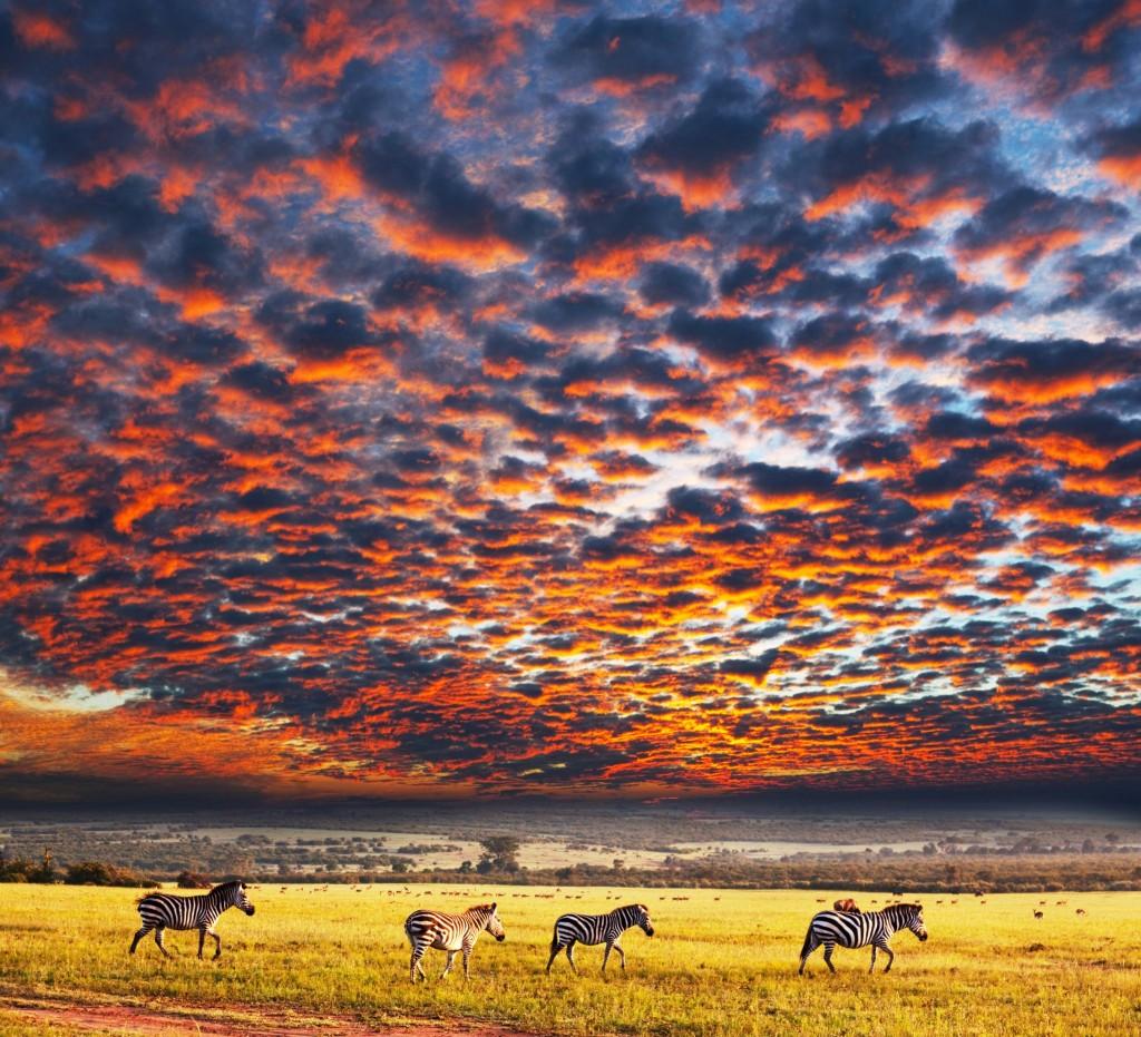 Západ slunce nad národním parkem Serengeti