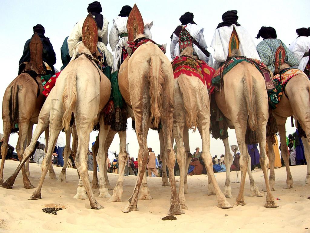 Saharský festival