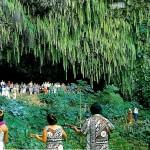 Fern Grotto v původním stavu