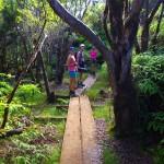 Na Pihea Trailu