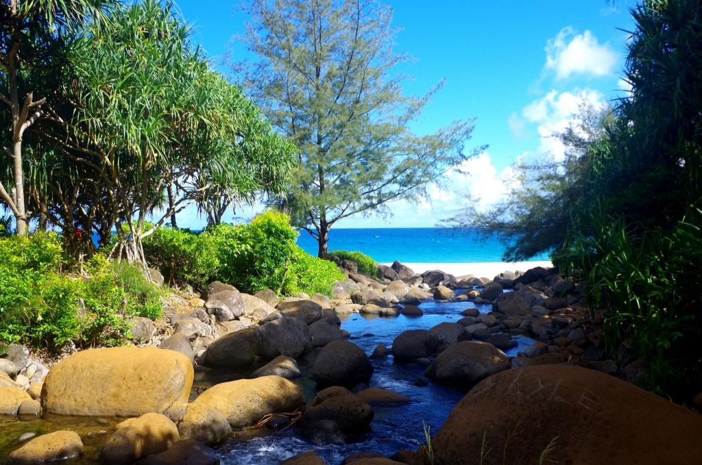 Řeka u pláže Hanakapiai