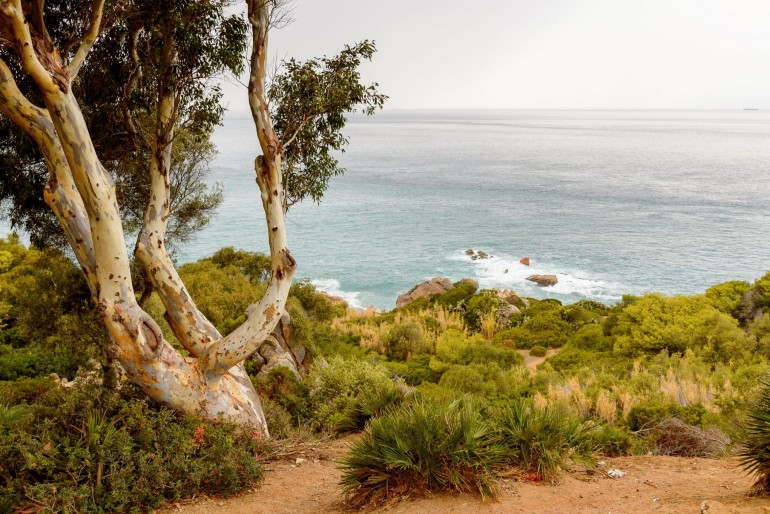 Národní park El Houceima (Al Hoceima)
