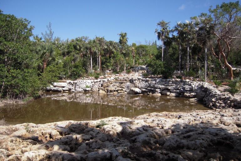 Národní park Leon Levy Native Plant Preserve