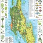 Mapa ostrova Zanzibar