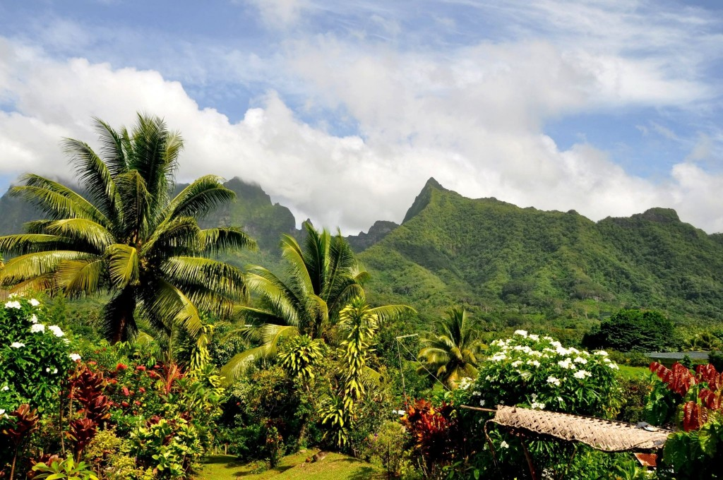 Vnitrozemí ostrova Raiatea