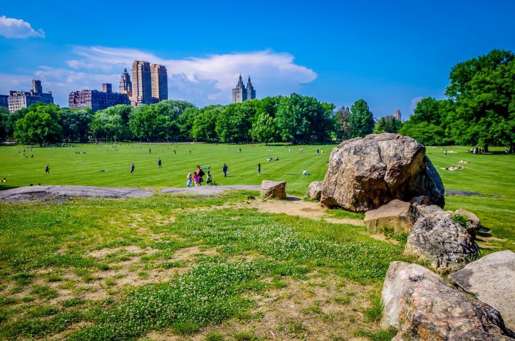Louka v Central Parku