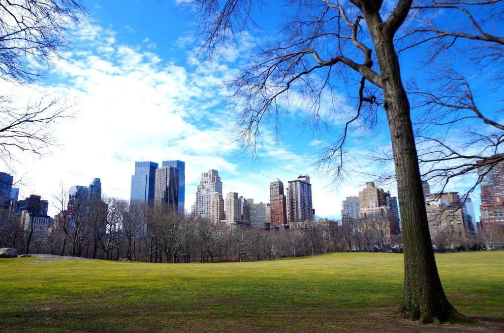 Výhled z Central Parku
