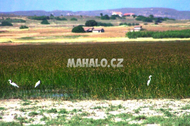 Jezero Chortarolimni