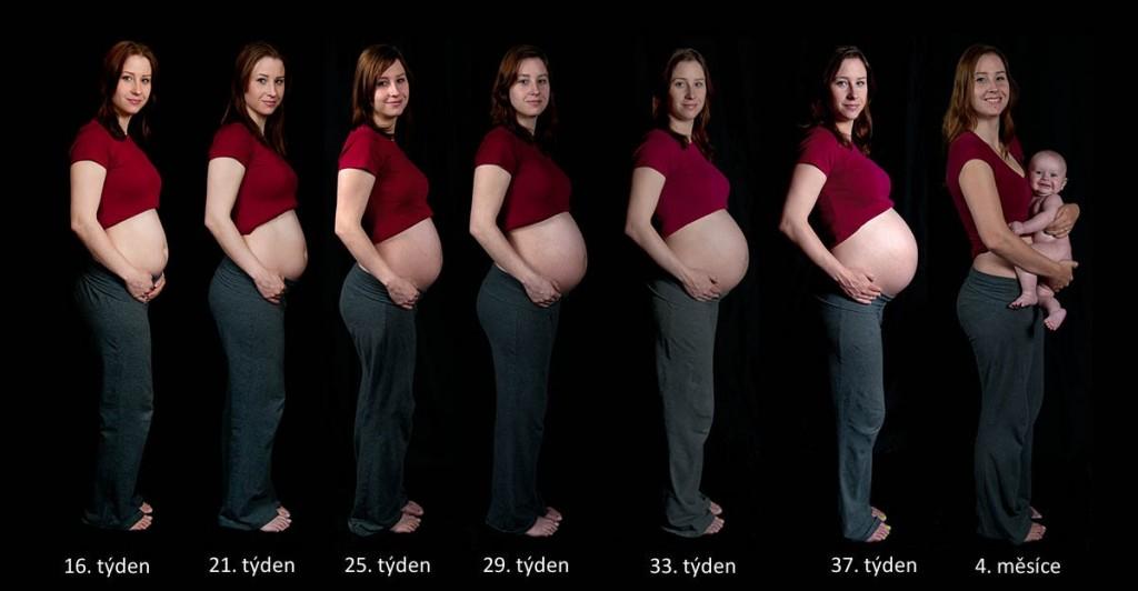Jak jde čas v těhotenství