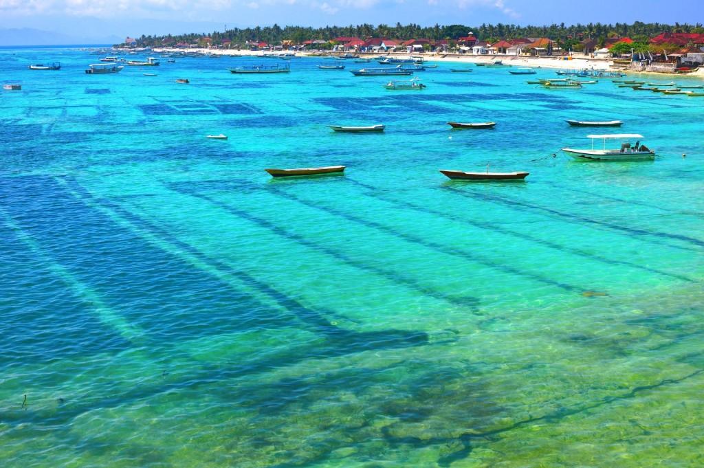 Farma na mořské řasy na ostrově Nusa Lembongan
