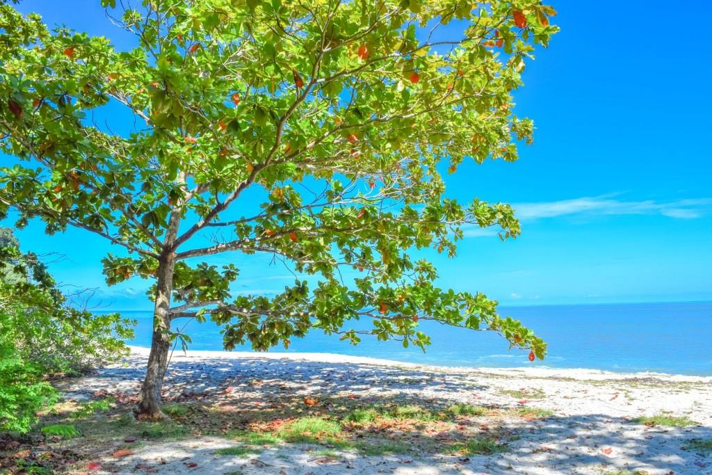 Krásné pláže na ostrově Pulau Penang