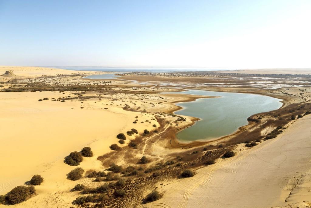 Oáza Al-Fayum