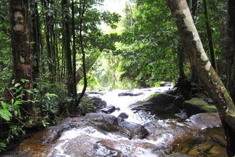 Národní park Betung Kerihun (Bentuang Karimun)