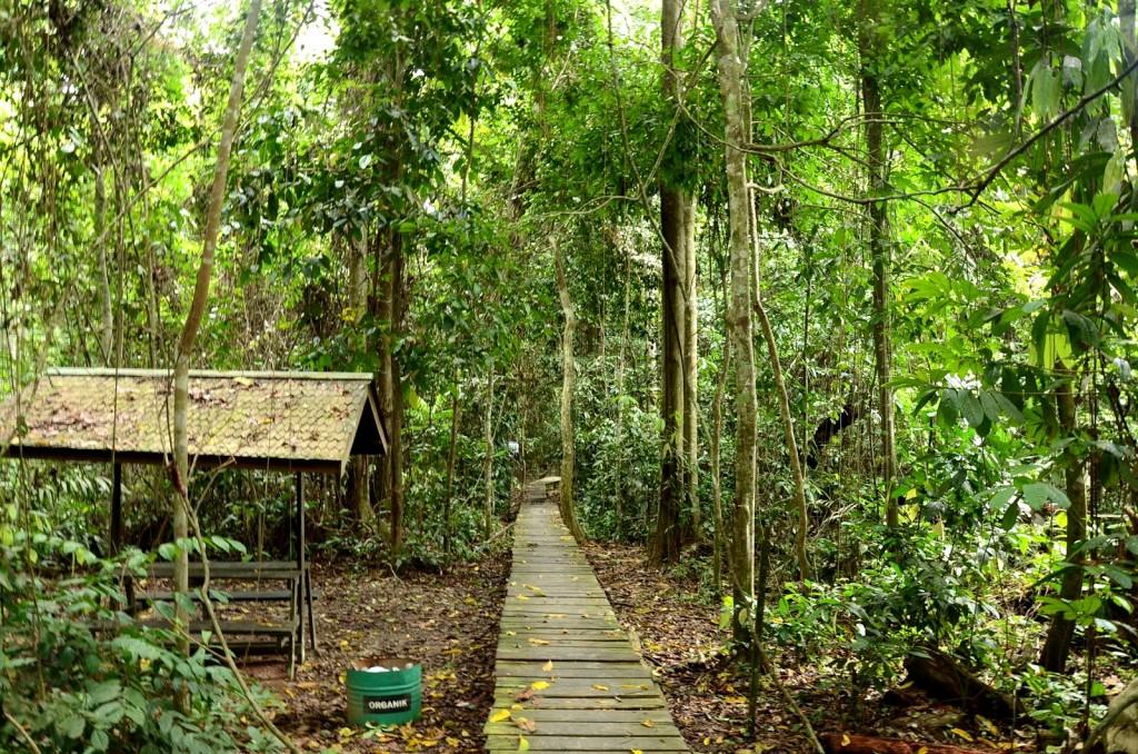 Národní park Kutai