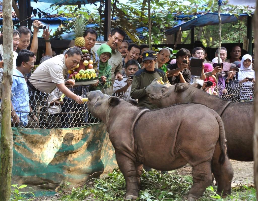 Národní park Ujung Kulon