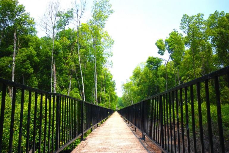 Přírodní park Taman Alam Kuala Selangor