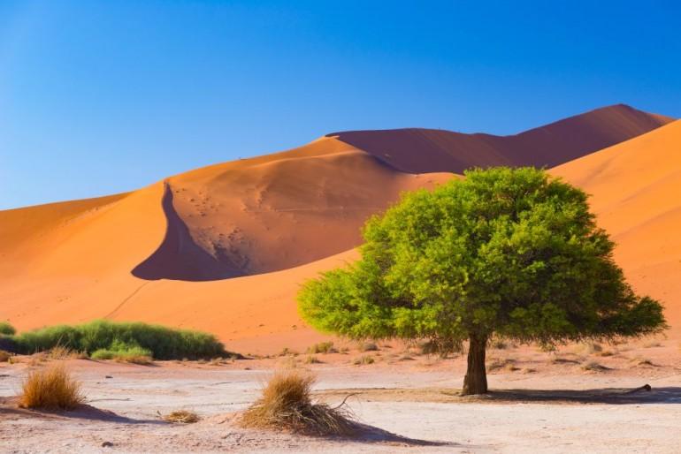 TOP místa Afriky: Kam a kdy v Africe vyrazit?