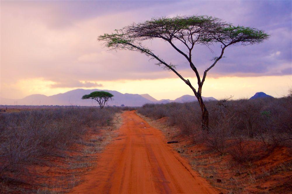 Národní park Tsavo