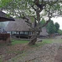 Puvodni balijska vesnice