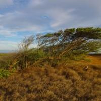 Jižní cíp Big islandu