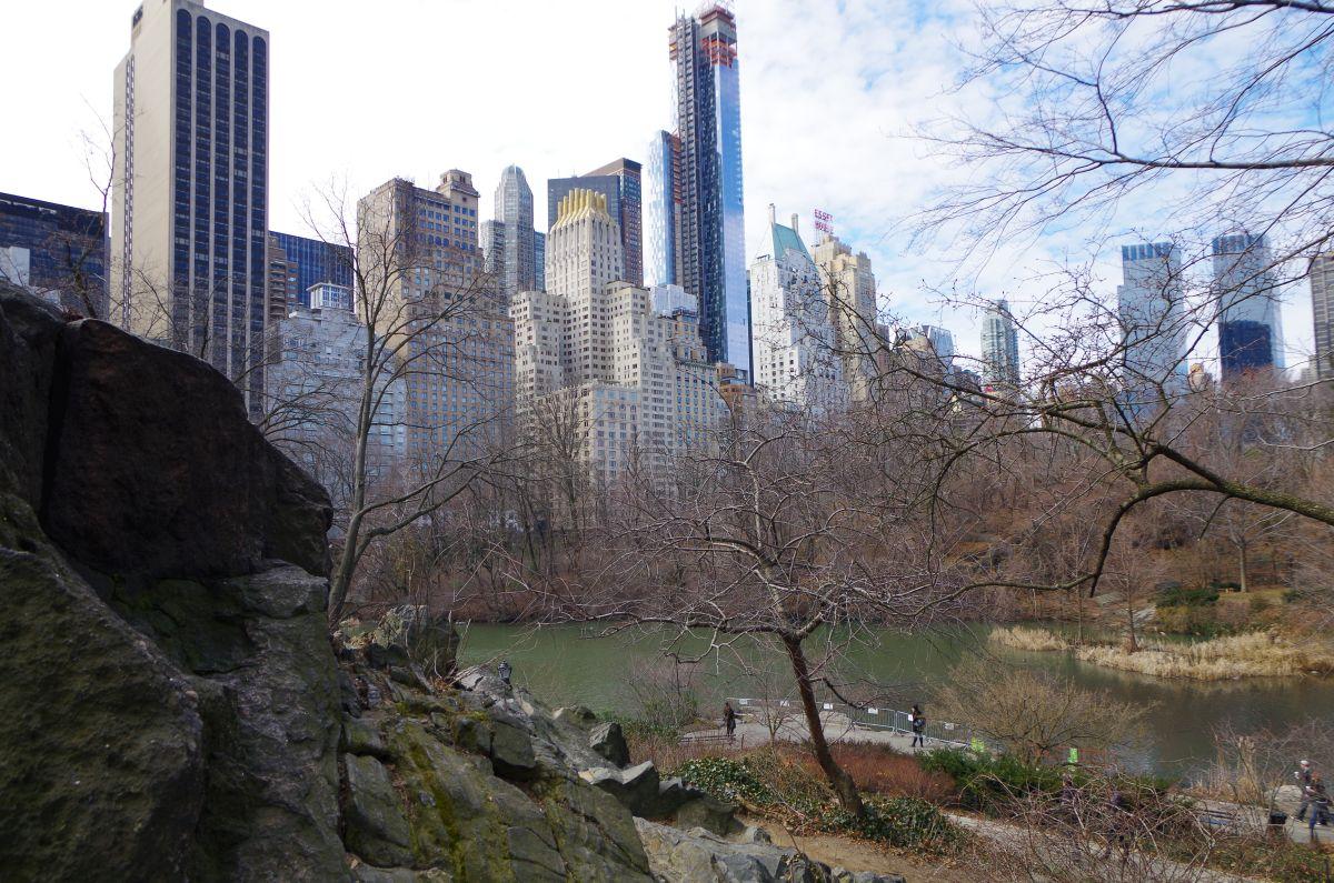 Central park v zimě